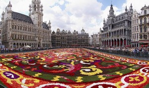 800px-Brussels_floral_carpet_B